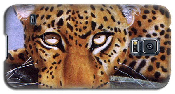 Leopard In A Tree Galaxy S5 Case