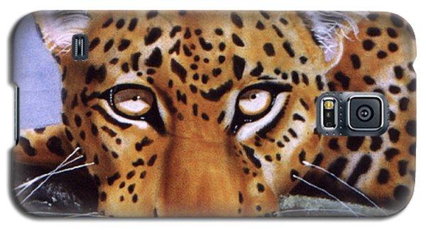 Leopard In A Tree Galaxy S5 Case