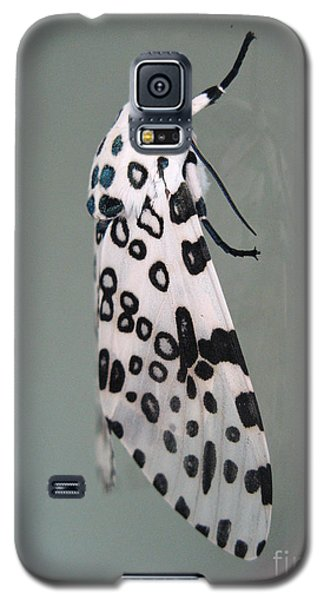 Leopard Moth Galaxy S5 Case