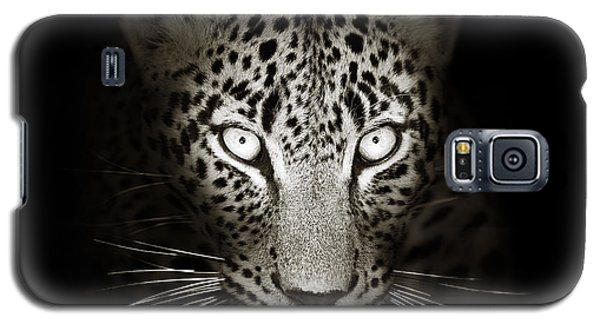 Cats Galaxy S5 Case - Leopard Portrait In The Dark by Johan Swanepoel