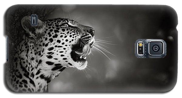 Wildlife Galaxy S5 Case - Leopard Portrait by Johan Swanepoel