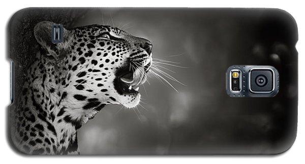 Leopard Portrait Galaxy S5 Case by Johan Swanepoel