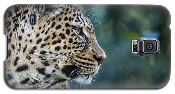 Leopard's Look Galaxy S5 Case