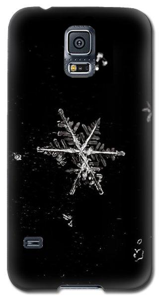 Let It Snow Galaxy S5 Case