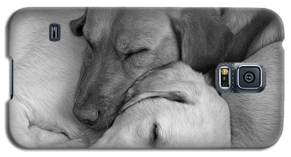 Let Sleeping Dogs Lie Galaxy S5 Case