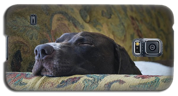 Galaxy S5 Case featuring the photograph Let Sleeping Dogs Lie. by Phil Abrams