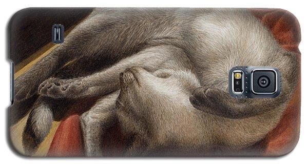 Let Sleeping Kitties Lie Galaxy S5 Case