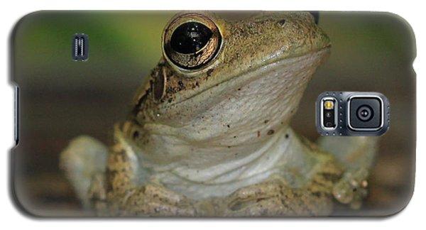 Let's Talk - Cuban Treefrog Galaxy S5 Case