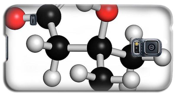Leucine Metabolite Molecule Galaxy S5 Case by Molekuul