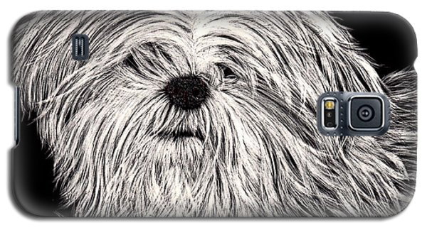 Lhasa Apso Galaxy S5 Case