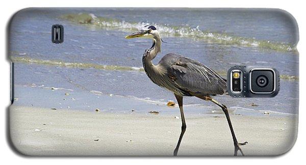 Lido Beach Blue Galaxy S5 Case