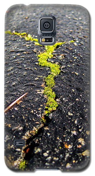 Galaxy S5 Case featuring the photograph Life Between The Cracks by Mike Lee