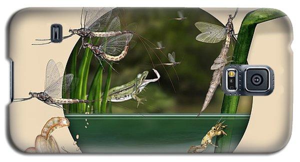 Life Cycle Of Mayfly Ephemera Danica - Mouche De Mai - Zyklus Eintagsfliege - Stock Illustration - Stock Image Galaxy S5 Case