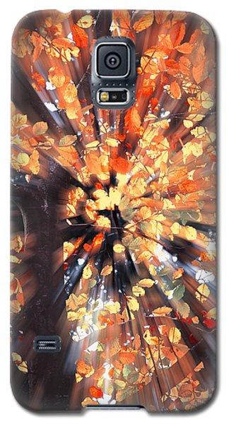 Life Is A Beech Galaxy S5 Case
