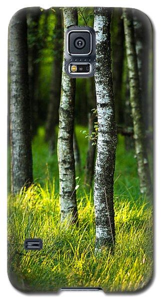 Life Is A Birch Galaxy S5 Case