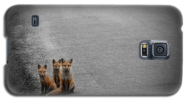Life Is An Unknown Highway Galaxy S5 Case by Jim Garrison