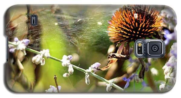 'life' Galaxy S5 Case by Joanne Brown