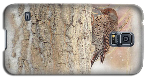 Life Of A Northern Flicker Galaxy S5 Case