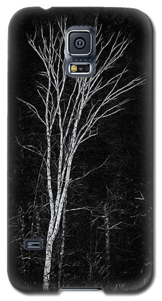 Life's A Birch No.2 Galaxy S5 Case by Mark Myhaver