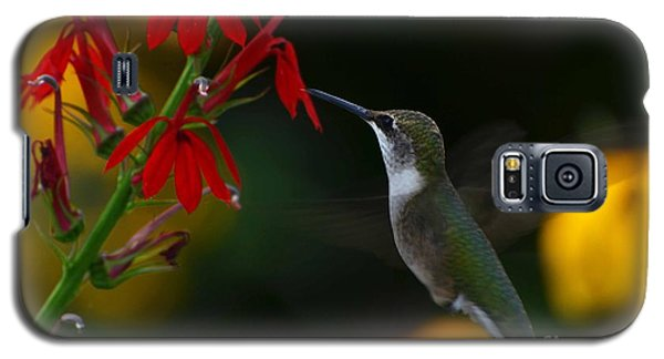 Galaxy S5 Case featuring the photograph Lifes Little Pleasures 2 by Judy Wolinsky