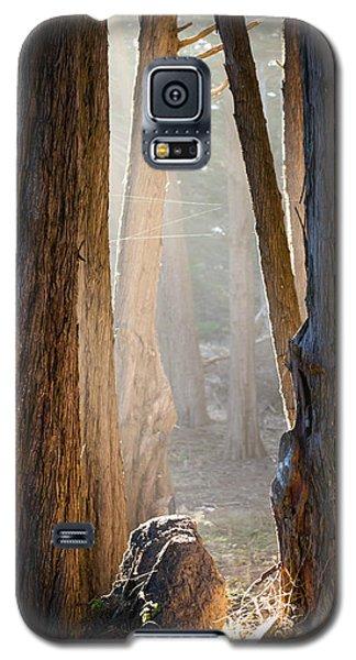 Light Galaxy S5 Case