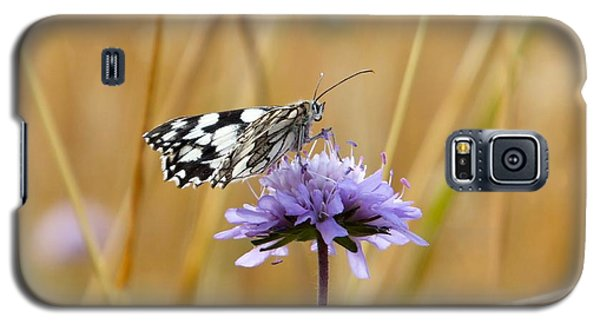 Light Butterfly Galaxy S5 Case by Marc Philippe Joly