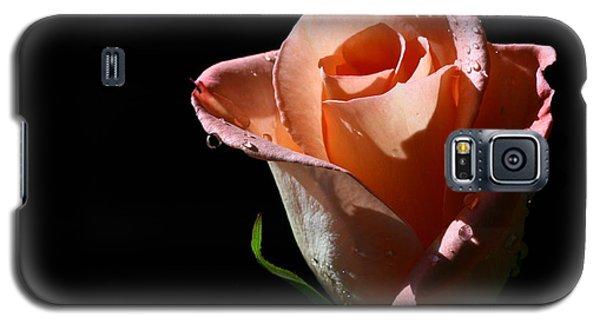 Galaxy S5 Case featuring the photograph Light Catcher by Doug Norkum