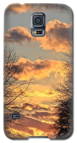 Galaxy S5 Case featuring the photograph Light Catcher by Julie Andel