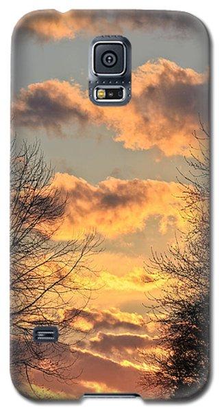 Light Catcher Galaxy S5 Case by Julie Andel