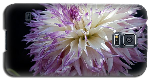 Galaxy S5 Case featuring the photograph Light Dance by Haleh Mahbod