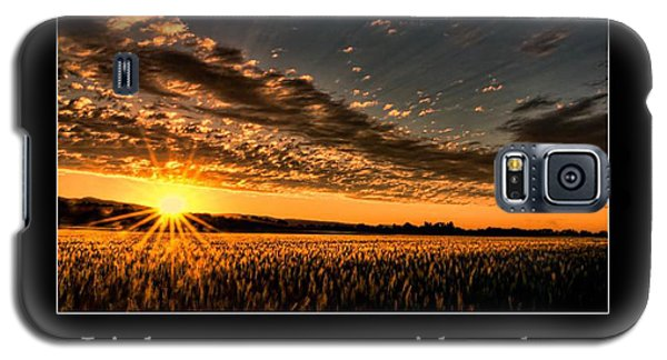 Galaxy S5 Case featuring the photograph Light by Don Schwartz