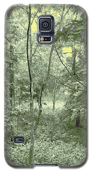 Galaxy S5 Case featuring the photograph Light Forest Scene by Tom Wurl