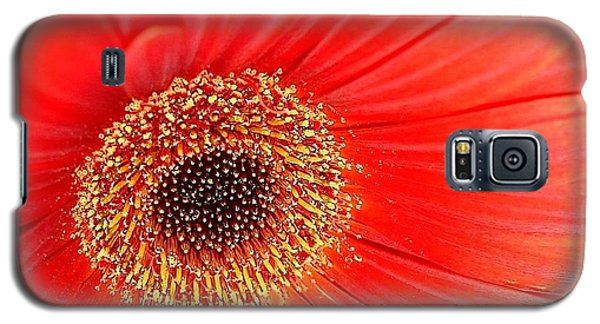 Galaxy S5 Case featuring the photograph Light On by Katy Mei