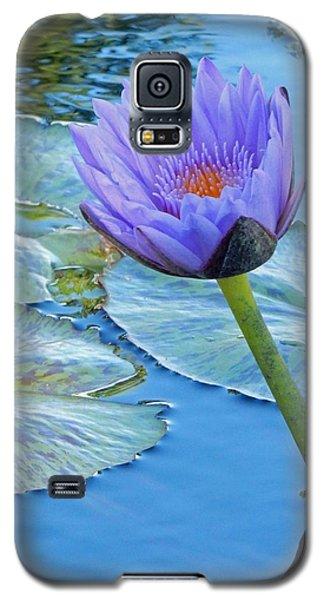 Light Purple Water Lily Galaxy S5 Case by Pamela Walton