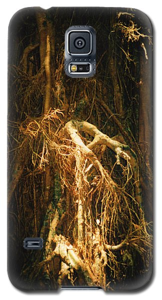 Galaxy S5 Case featuring the photograph Light Roots by Evelyn Tambour