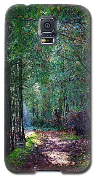 Galaxy S5 Case featuring the photograph Light The Way by Bruce Bley