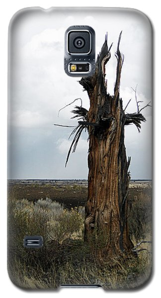 Galaxy S5 Case featuring the photograph Lightening Strikes by Jennifer Muller