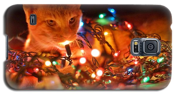 Lighting Up The Christmas Cat Galaxy S5 Case by Lynda Dawson-Youngclaus