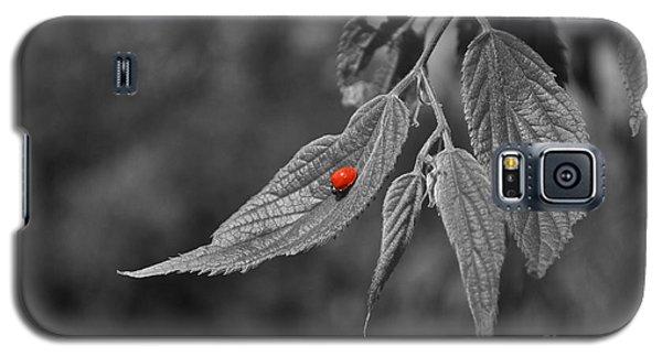 Galaxy S5 Case featuring the photograph Lightness by Simona Ghidini