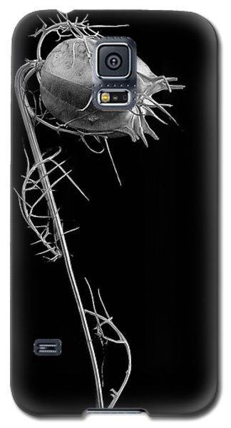 Like Love Galaxy S5 Case
