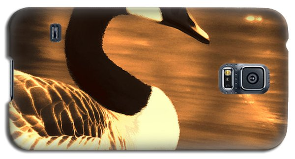 Lila Goose The Pond Queen Sepia Galaxy S5 Case