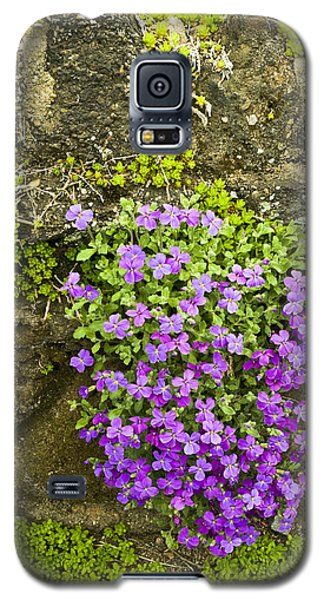 Galaxy S5 Case featuring the photograph Lilac Bush by Gary Slawsky