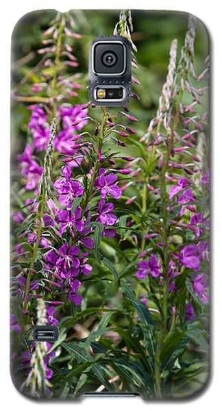 Galaxy S5 Case featuring the photograph Lilac Flower by Leif Sohlman