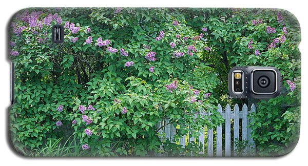 Galaxy S5 Case featuring the photograph Lilac Season by Alan L Graham