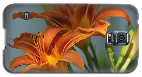 Lilies 1 Galaxy S5 Case