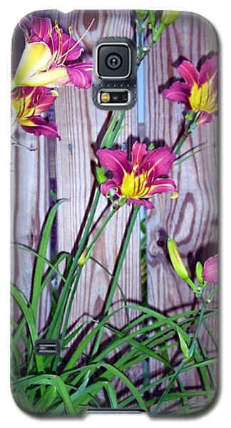 Lilies Against The Wooden Fence Galaxy S5 Case
