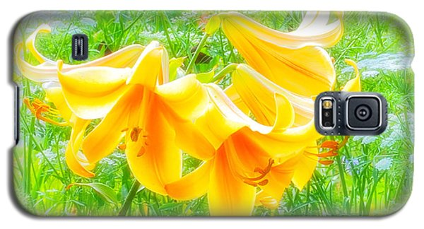 Lilies Back-lit Galaxy S5 Case