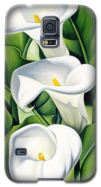Lily Galaxy S5 Case - Lilies by Catherine Abel