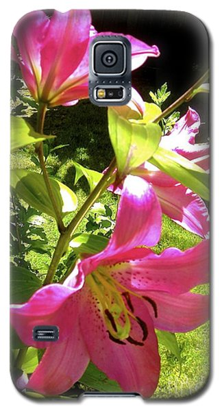 Lilies In The Garden Galaxy S5 Case