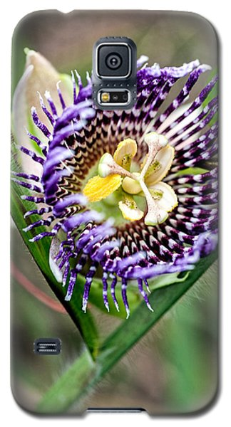 Galaxy S5 Case featuring the photograph Lilikoi Flower by Dan McManus